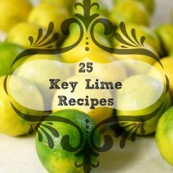 25 key lime recipes logo