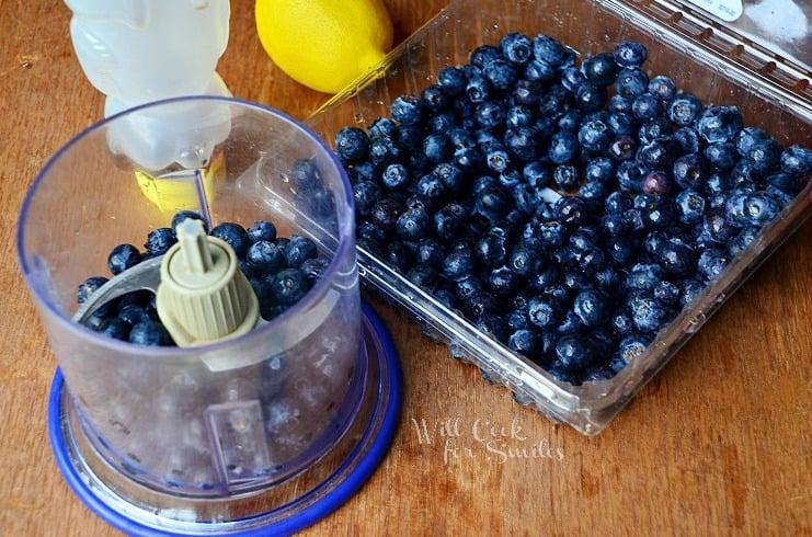 Blueberry-Lemon- Popsicles-1 willcookforsmiles.com