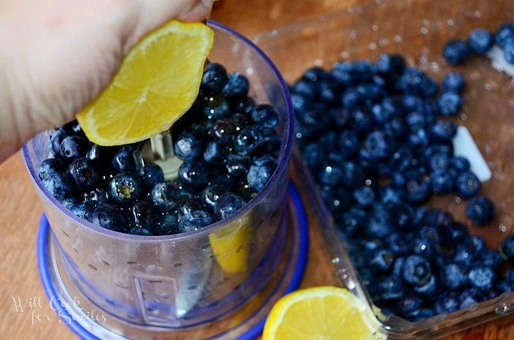 Blueberry-Lemon- Popsicles-2 willcookforsmiles.com
