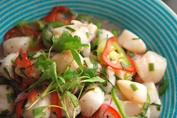 homemade ceviche recipe