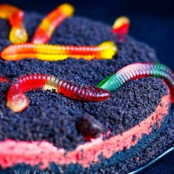 close up view of dirt and worms cake. Red velvet cake with oreo crumb topping and candied worms on top
