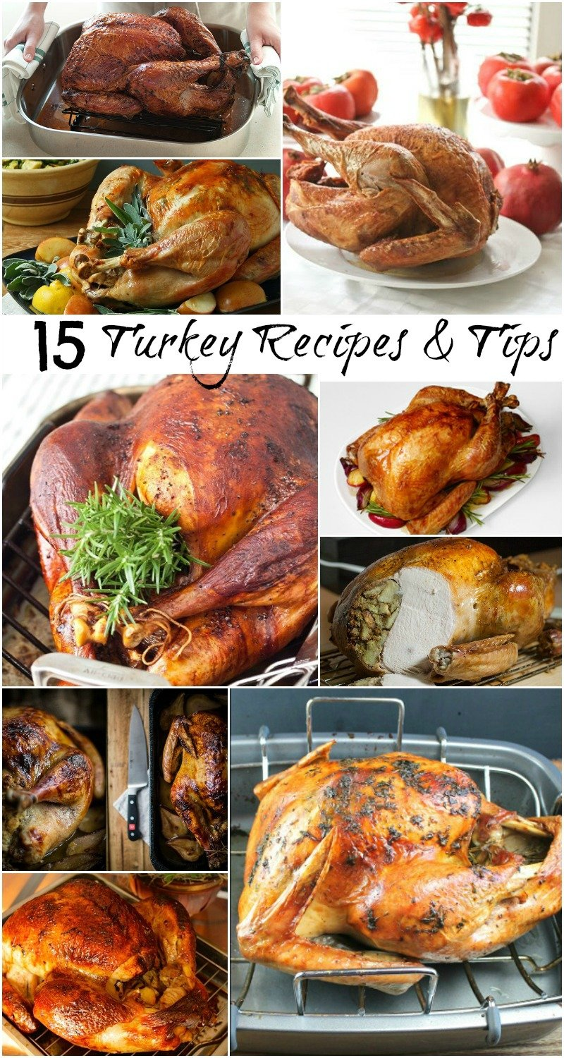 Turkey Collection Collage