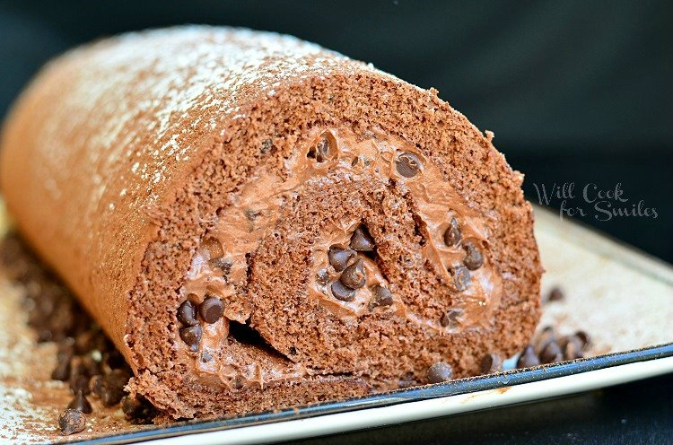 Close up of Chocolate Cake Roll on a plate