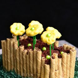 "spring flower bed cake on shredded green paper with yellow cookie flowers in chocolate ""dirt"" with black background"