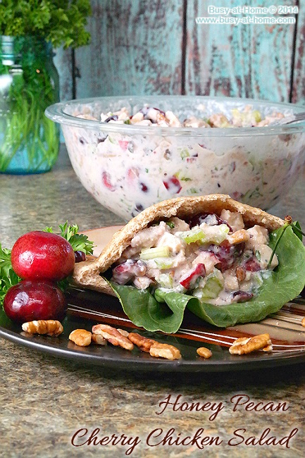 honey-pecan-cherry-chicken-salad-pita-2