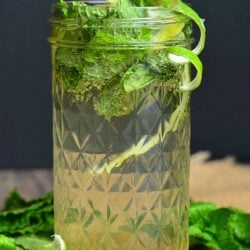 Mason jar filled with Lemon Lime Mojito with mint and lime skin garnish