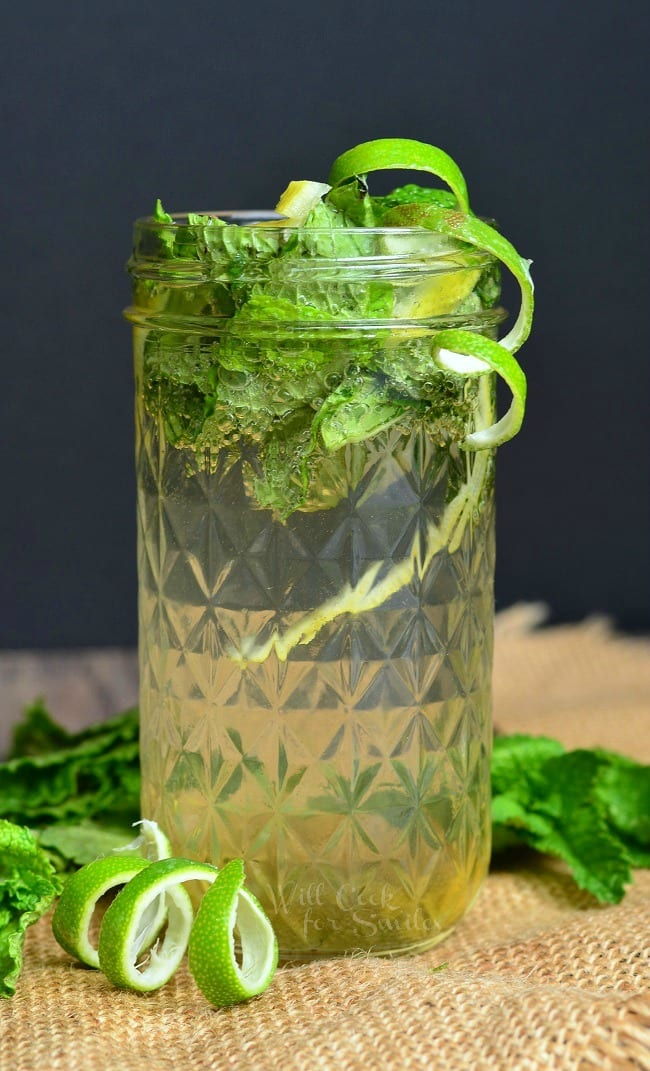 Lemon Lime Mojito. Refreshing, flavorful Mojito that's perfect for spring and summer warm weather. | from willcookforsmiles.com
