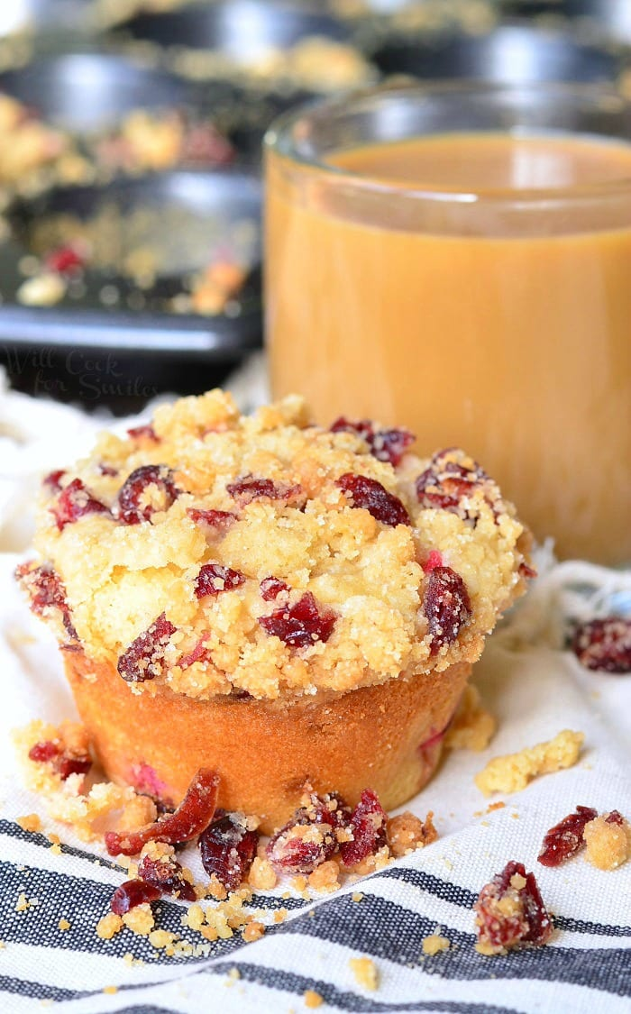 Cranberry White Chocolate Chip Streusel Muffins 7 from willcookforsmiles.com