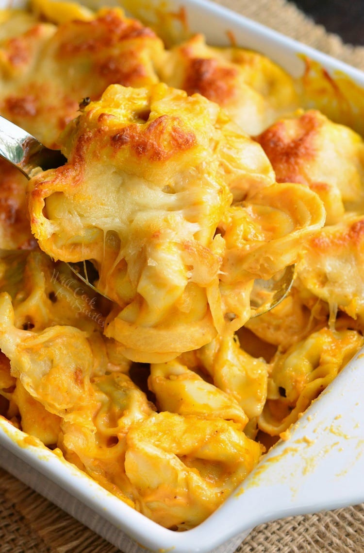 Spicy Three Cheese Pumpkin Tortellini Bake. This delightful tortellini bake is made with a creamy pumpkin sauce and loaded with gooey cheese. Feel free to add some protein to this pasta bake for more protein.