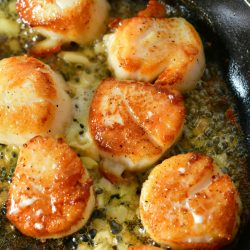 closeup of several seared scallops in a skillet with butter with garlic pieces around