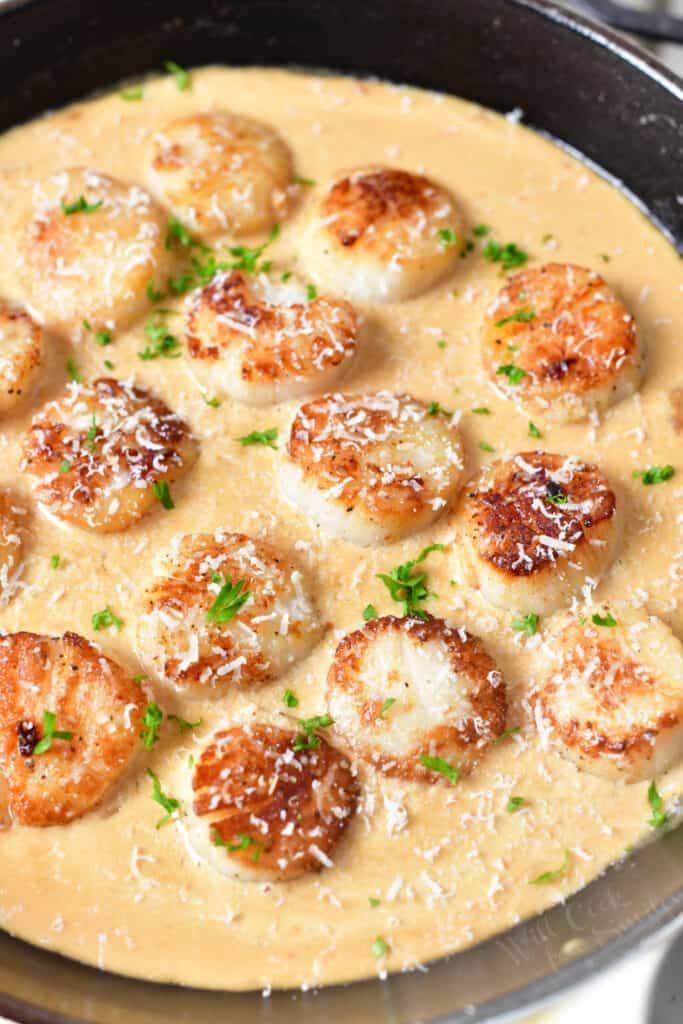 pan of scallops with cream sauce and garnish