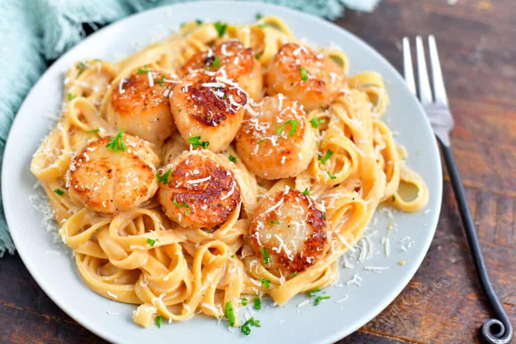 plate of seared scallops on a bed of pasta
