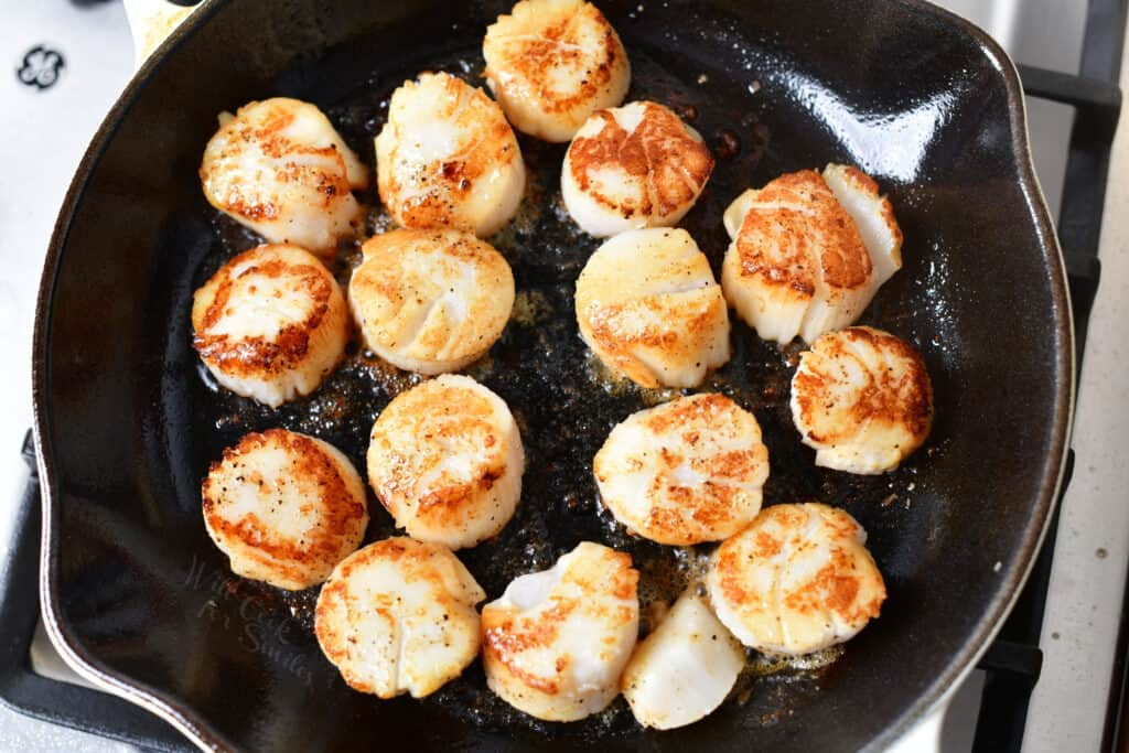 seared scallops with a golden crust