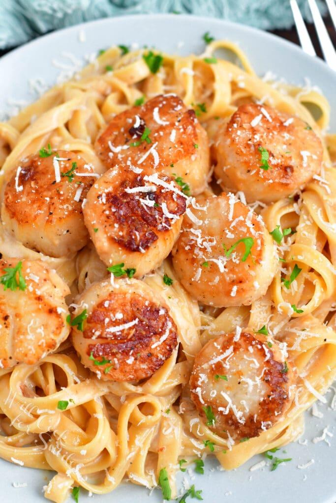 overhead: fettucine and scallops with cream sauce